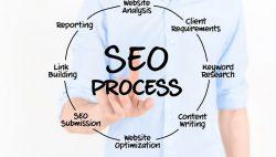 dịch vụ seo web
