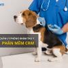 Phần mêm quản lý phòng khám thú y